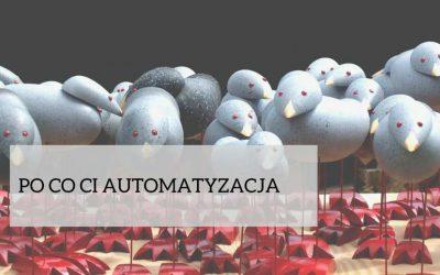 Słów parę o automatyzacji