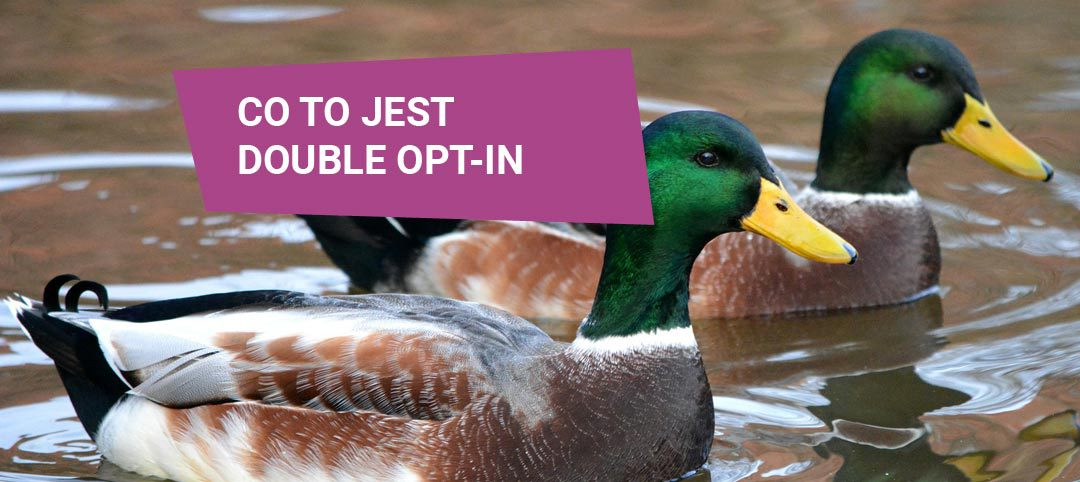 Co to jest double opt-in