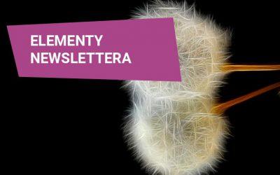Elementy poprawnie zbudowanego newslettera